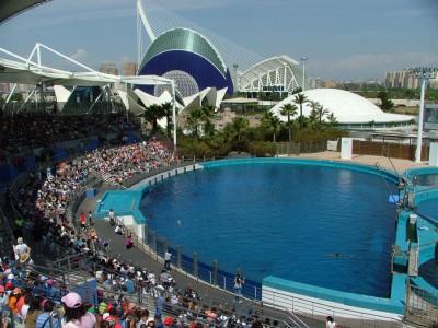 entradas escolares parques acuaticos