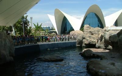 Venta entradas parques tematicos, excursión escolar oceanografic