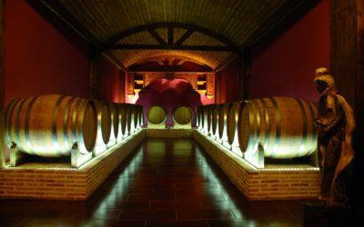 ruta del vino en la provincia de alicante