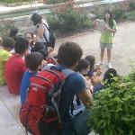 excursion escolar Jativa y los Borja