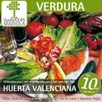 huerta valenciana, valencia cruise excursions