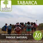 excursión escolar tabarca, excursión tabarca, parque natural tabarca, visits colegios Tabarca