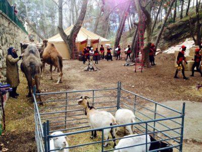 Campamento Real Alcoy 5 enero